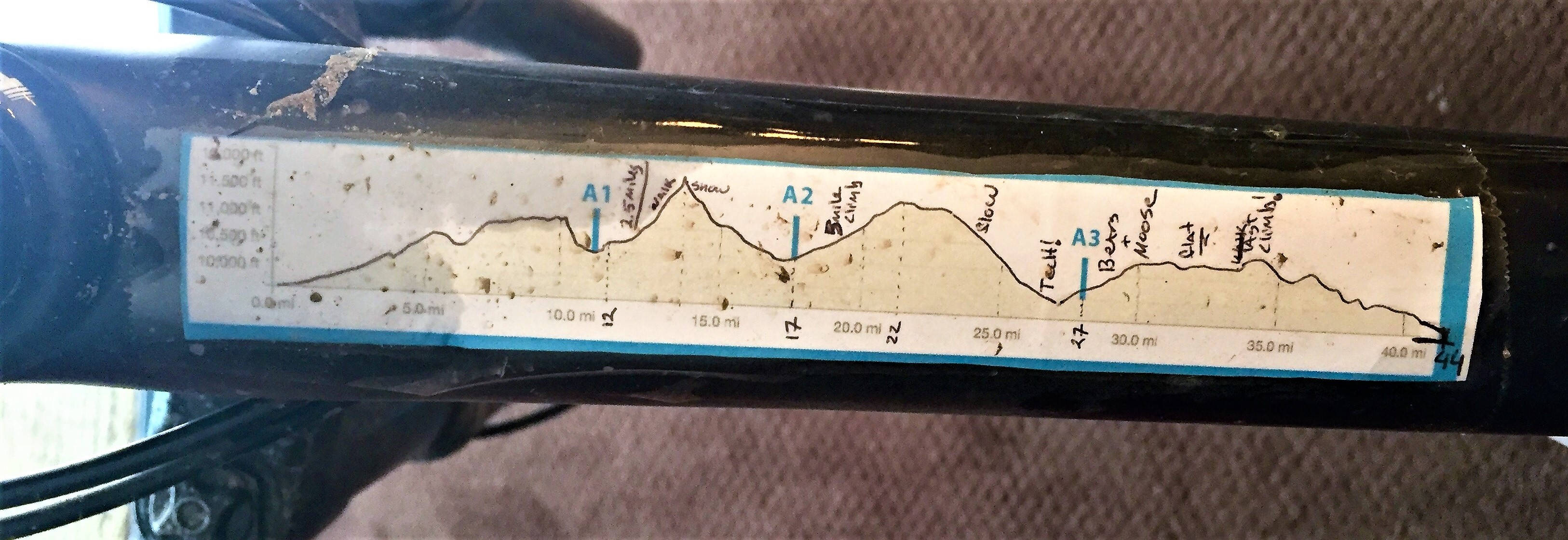 Stage 3 Profile (3)